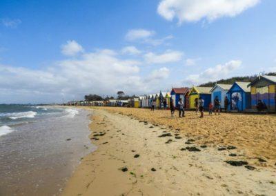 Steve Martin Brighton Beach